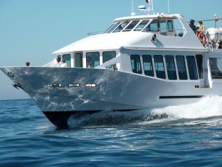 Dégustation de produits de la mer à bord d'un bateau