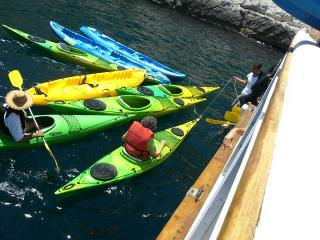 Activités nautiques entre collègues à Marseille
