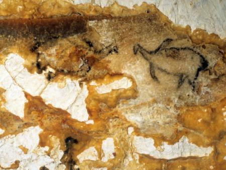 Grotte Cosquer, peintures rupestres