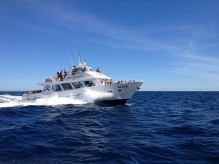 Privatisation de navire pour manifestations nautiques