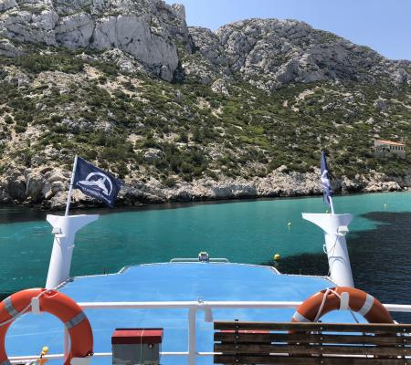 Complete day at sea in the Calanques National Park
